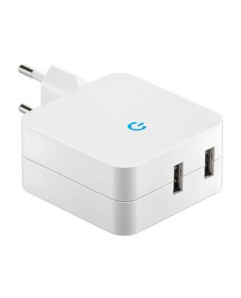 goobay Ładowarka USB Duo biały 4200mA