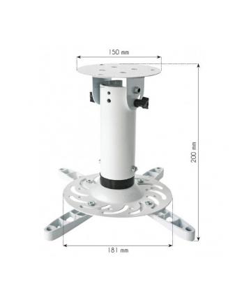 Techly Uchwyt sufitowy do projektora 20 cm, 15 kg, biały