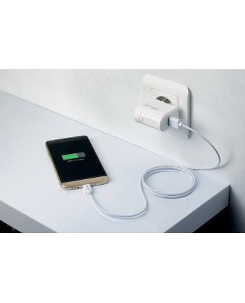 PNY Type C Charger EU USB-C P-AC-TC-WEU01-RB