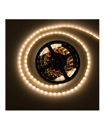 Komplet dwóch taśm LED (2x1 2m) z detektorem ruchu oraz zmierzchu  w żelu IP67  z zasilaczem  neutralna barwa światła  kompletny zestaw do montażu