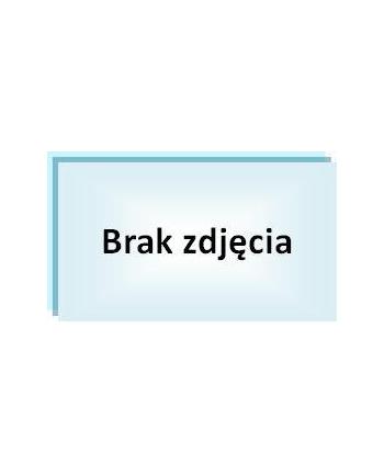 MICROSOFT OEM Oprogramowanie Windows Server CAL 2016 Polish 5 Clt User CAL