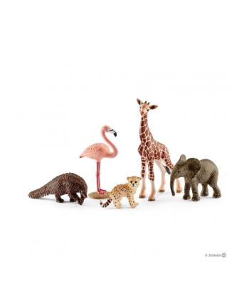 SLH 42388 Dzikie zwierzęta mix