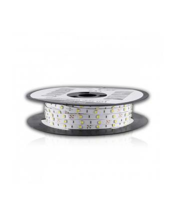 Taśma LED 50m SMD5050 7.2W/m 10mm biała zimna