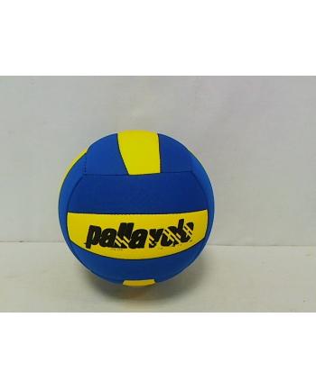 Piłka siatkowa MDPS11