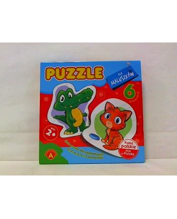 Puzzle dla maluszków krokodyl 17328