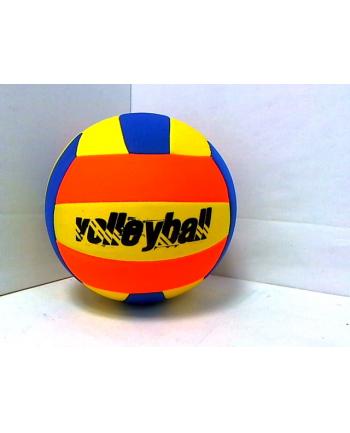 Piłka siatkowa MDPS10