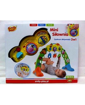 Mini siłownia - centrum aktywności 3w1 0853