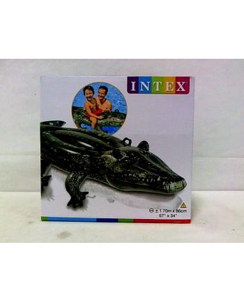 Aligator dmuchany 170X86 SP57551NP /6