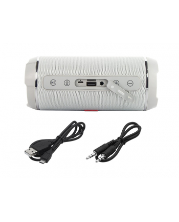 Blow Głośnik Bluetooth BT460