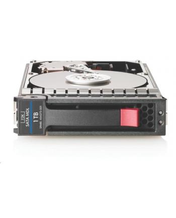 hewlett packard enterprise Dysk 1TB SATA 7.2K LFF DS HDD 861686-B21