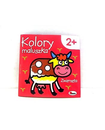 morex Kolory maluszka zwierzęta 1 58.11
