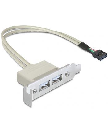Delock gniazdo na śledziu USB 2.0 x2  Low Profile