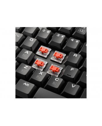Sharkoon PureWriter TKL RGB - Low Profile - Mechanical - Kailh Red US-Layout