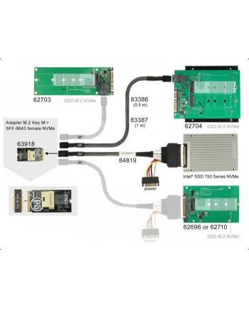 DeLOCK Adap. Key M>SFF-8643 NVMe - horizontal