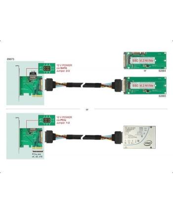 DeLOCK PCIe x4 card>1x int. NVMe St - SFF-8639