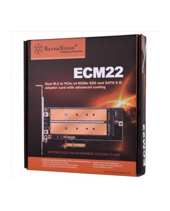 silverstone technology SilverStone SST-ECM22