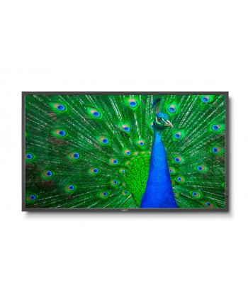 NEC Monitor MultiSync LCD C651Q, 65'', czarny