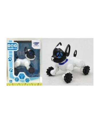 norimpex Pies cyber Dog mały 1001857