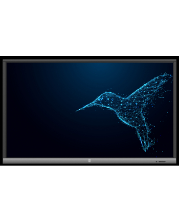avtek Monitor interaktywny TouchScreen 5 LITE 55