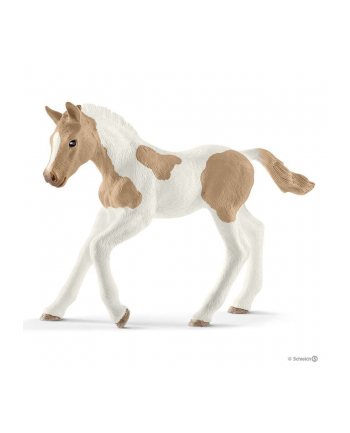 schleich SLH 13886 Koń Paint horse foal