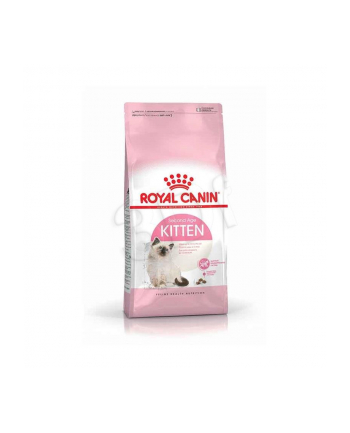 royal canin FHN Kitten 10 kg