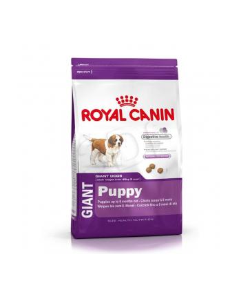 Karma Royal Canin Puppy Food Giant (15 kg )