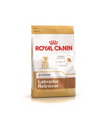Karma Royal Canin SHN BREED LABRADOR JUNIOR (12 kg )