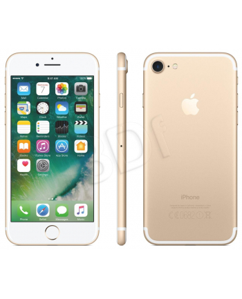 Smartfon Apple iPhone 7 ( 4 7  ; 1334x750 ; 32GB ; 2GB ; złoty ; LTE )
