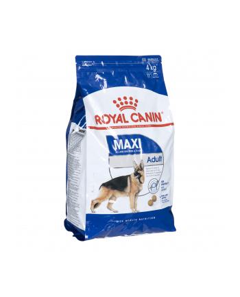 Karma Royal Canin SHN Maxi Adult (4 kg )