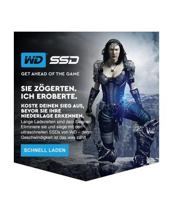 Dysk WD Blue WDS250G2B0A (250 GB ; 2.5 ; SATA III)