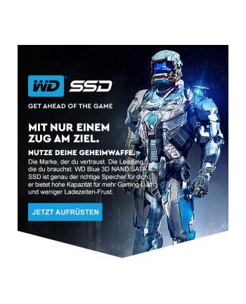 Dysk WD Blue WDS500G2B0A (500 GB ; 2.5 ; SATA III)
