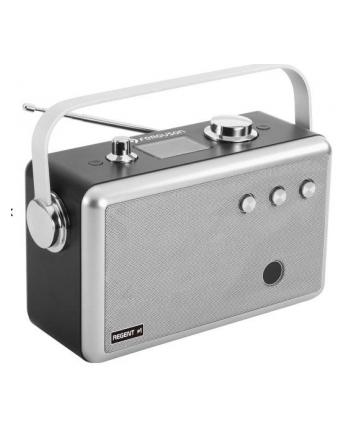 Radio   FERGUSON  Regent P1 grey (kolor szary)