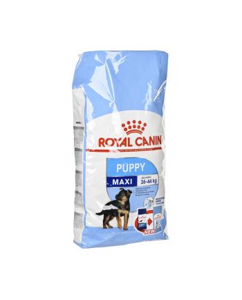Karma Royal Canin SHN Maxi Puppy (15 kg )