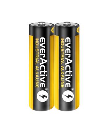 Baterie AA everActive EVLR6S2IK (40)