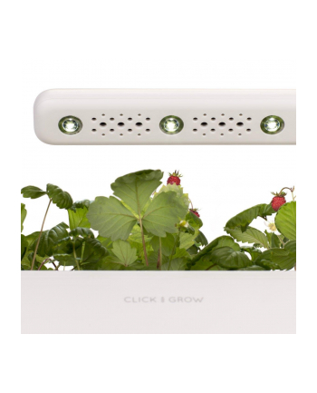 click and grow Click&Grow Inteligentna doniczka Smart Garden 3 Mellow Beige