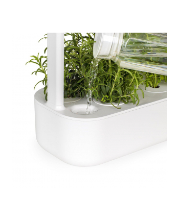 click and grow Click&Grow Inteligentna doniczka Smart Garden 9 White