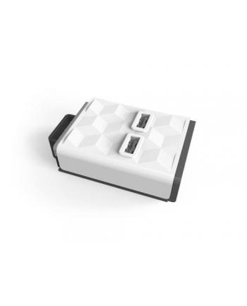 Moduł allocacoc Module 10096/MDUSB2 (2 x USB; kolor biały)